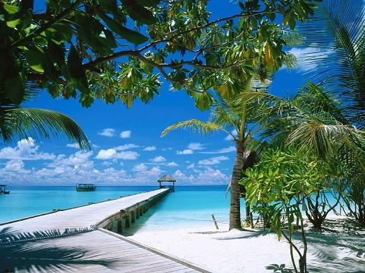 Где лучше провести медовый месяц