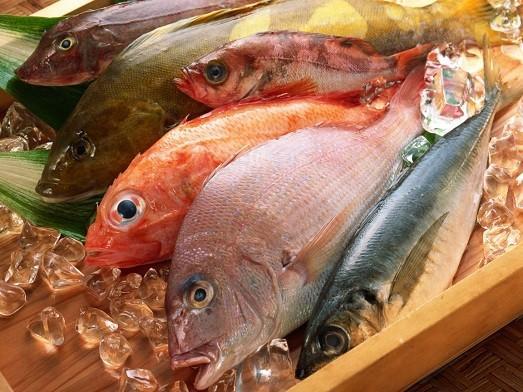 Чем полезна рыба