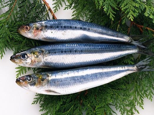 какая польза от рыбы фото