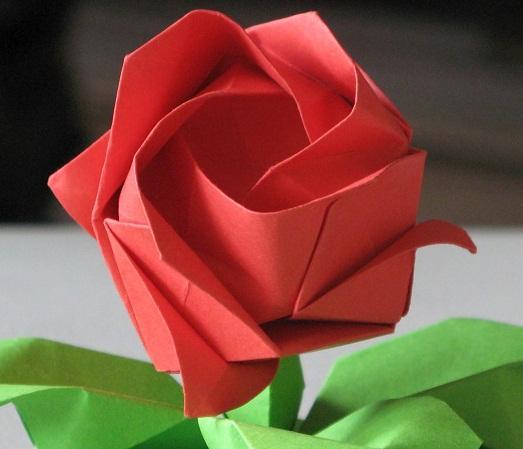 Оригинальная роза