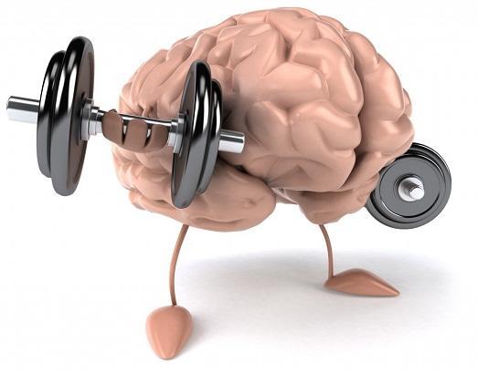 Нагружайте мозг