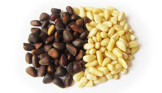 Вся правда о кедровых орешках