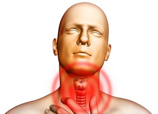 Почему ощущается ком в горле?