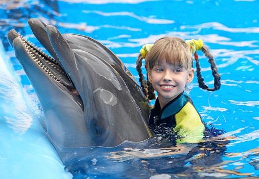 Минусы и плюсы дельфинотерапии