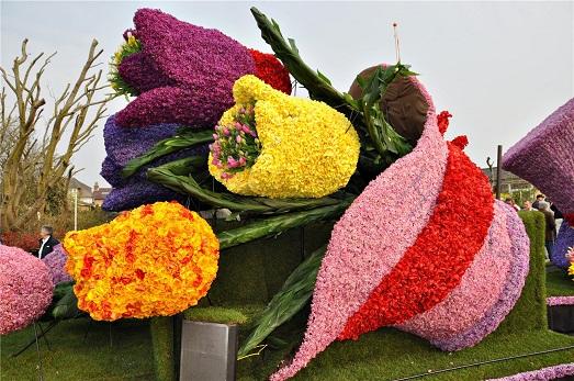 Страна цветов