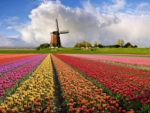 Шикарные и неповторимые Нидерланды
