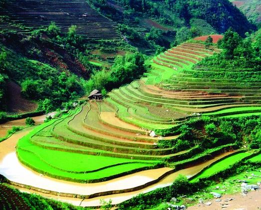 Что обязательно нужно увидеть во Вьетнаме?