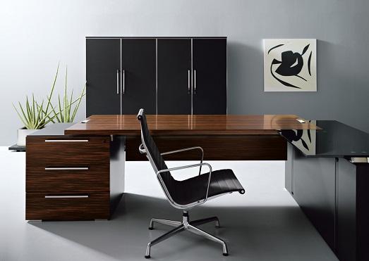 Лучшие варианты дизайна кабинета (13 фото)