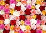 Где можно в Новосибирске заказать букет цветов?