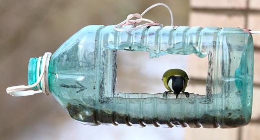Из бутылки
