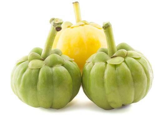 Гарциния камбоджийская – добавка, которая поможет похудеть
