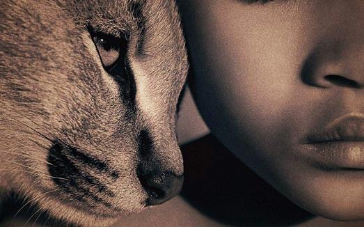 Топ 10 книг о дружбе человека и животных
