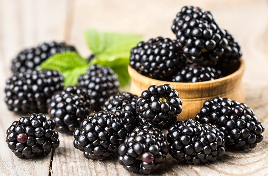Ежевика – вкусная и полезная ягода