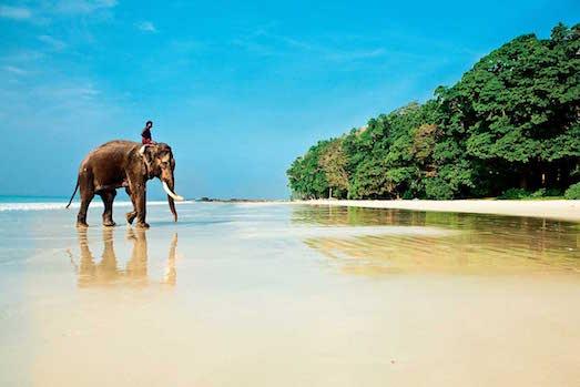 Андаманские острова — роскошный отдых в необычном месте