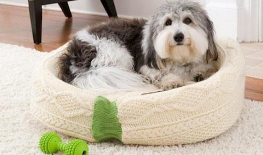 Из каких материалов можно сделать подстилку для собаки?