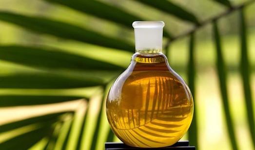 Что такое пальмовый олеин и опасен ли он?