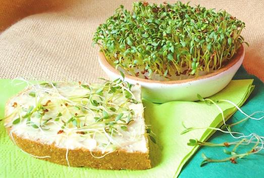 Как можно использовать кресс-салат?