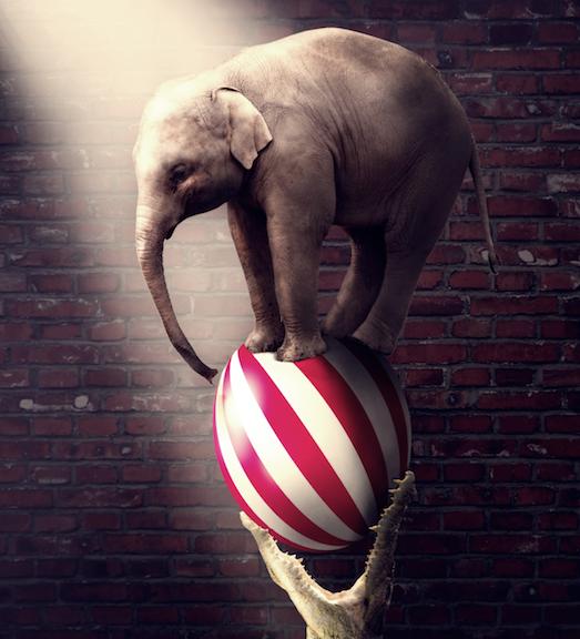 Десять самых старых цирков в мире