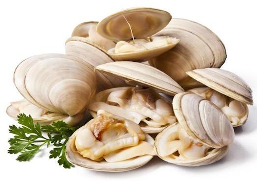 Секреты приготовления идеальных моллюсков