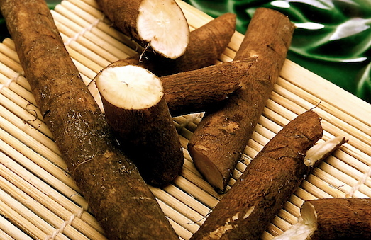 Лечебные свойства корня подсолнуха для организма