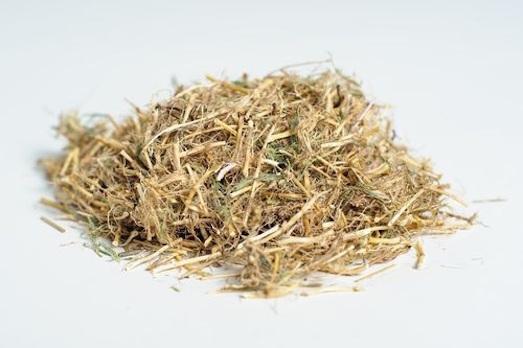 Какими свойствами обладает корень пырея?