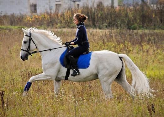 Чем для человека полезна верховая езда?