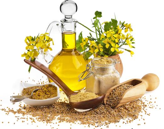 Полезные свойства горчичного масла