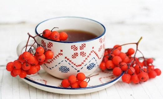 Секреты приготовления ароматного чая из рябины