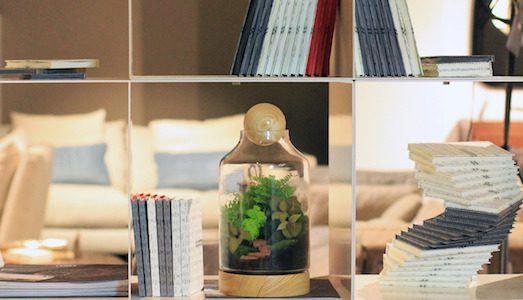 Флорариум — стильное украшение интерьера