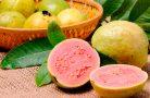 Полезные свойства фрукта гуава