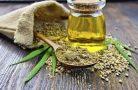 Конопляное масло — применение, свойства и вкус
