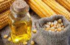 Чем полезно кукурузное масло?